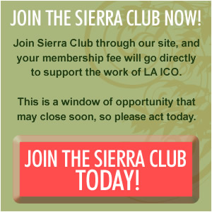 Join the Sierra Club!